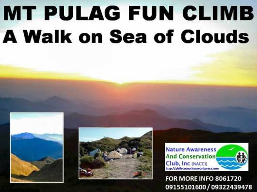 MT PULAG FUN CLIMB