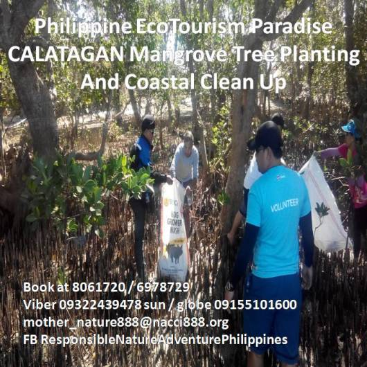 Calatagan Coastal Clean Up